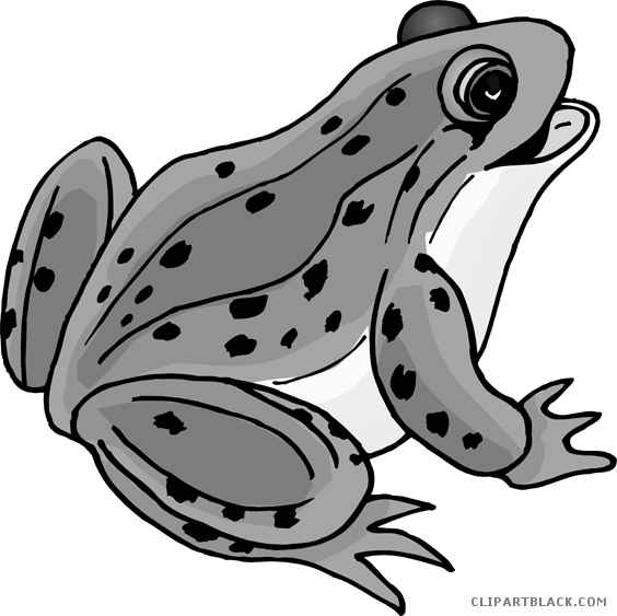 Frogs clipart animal. Frog medium page of