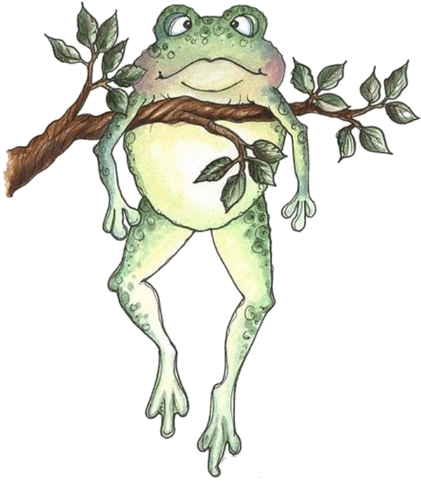 Frogs clipart bullfrog. Tubes grenouilles cards pinterest