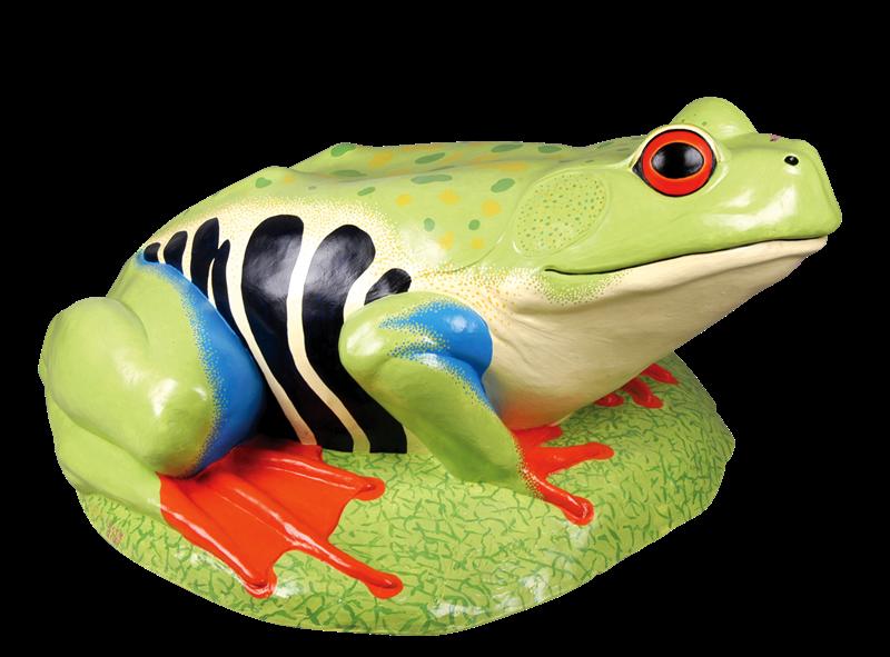 Frogs clipart bullfrog. American toad true frog