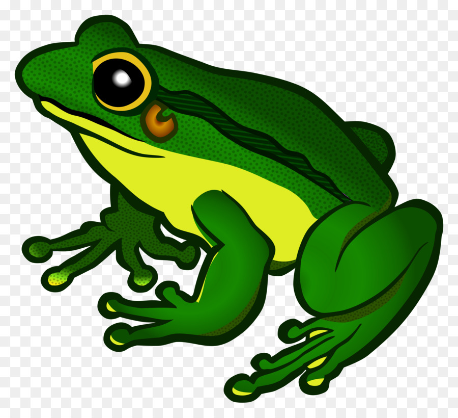 Frog cartoon transparent clip. Frogs clipart clear background