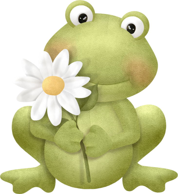Frogs clipart toy. Frog png clip art