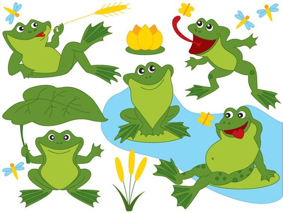 Digital vector green frogs. Toad clipart frog pond