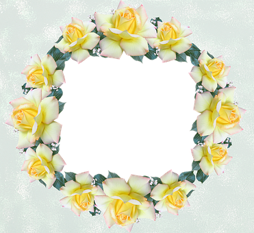 Free photo frame design. Frost border png