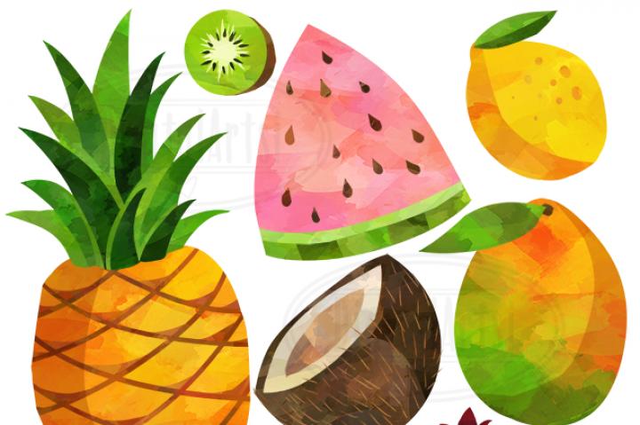 Fruit clipart. Watercolor fruits by digitalartsi