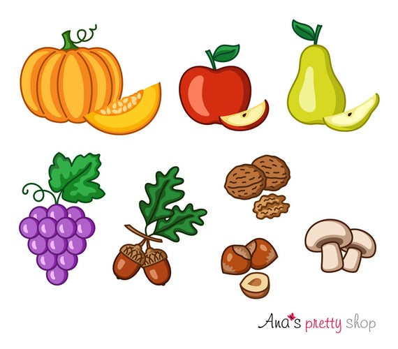 Autumn fruits pear grapes. Pumpkin clipart apple