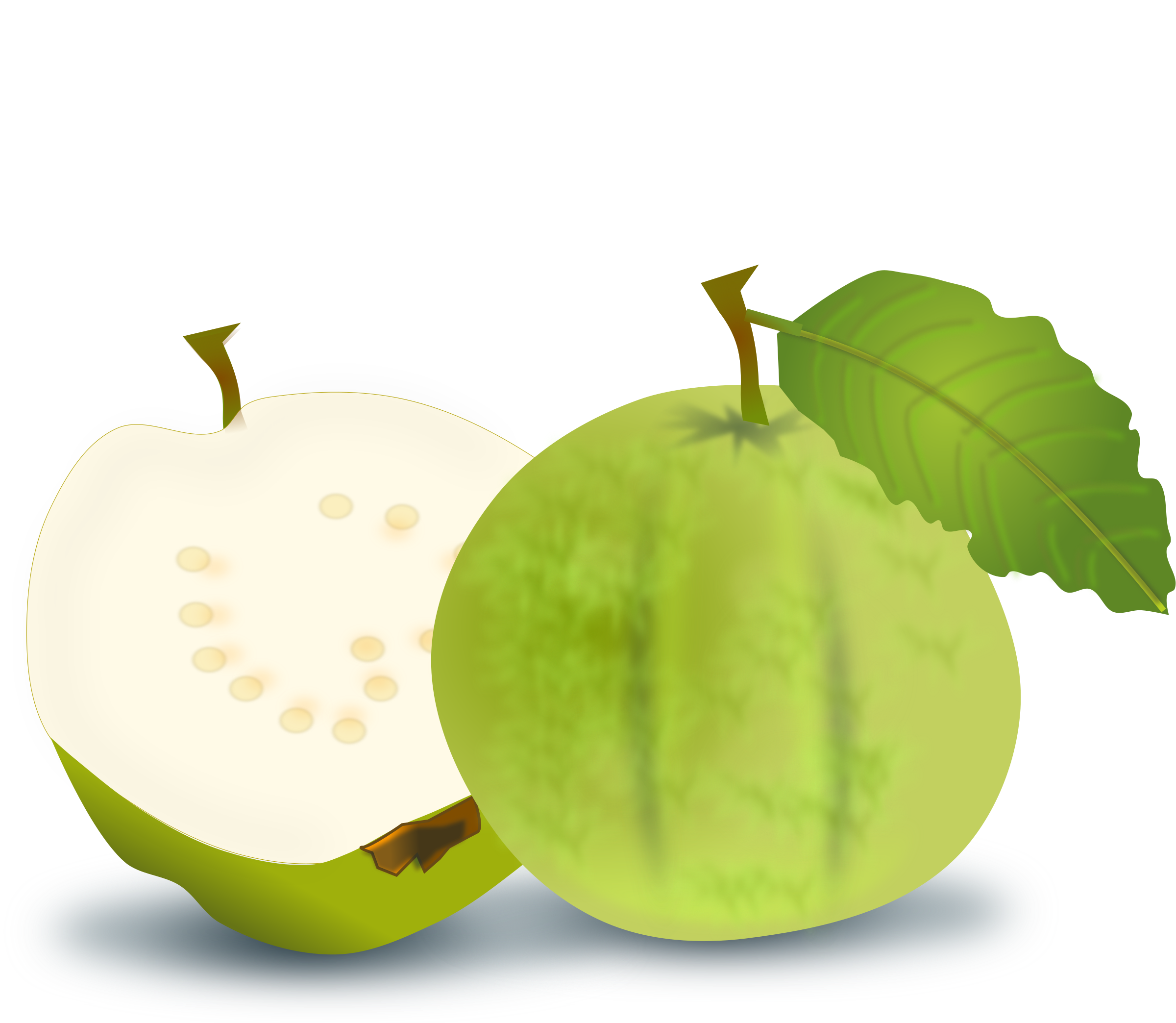 collection of guava. Pear clipart jambu