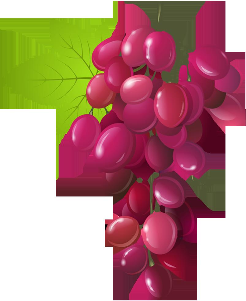 fruit clipart grape