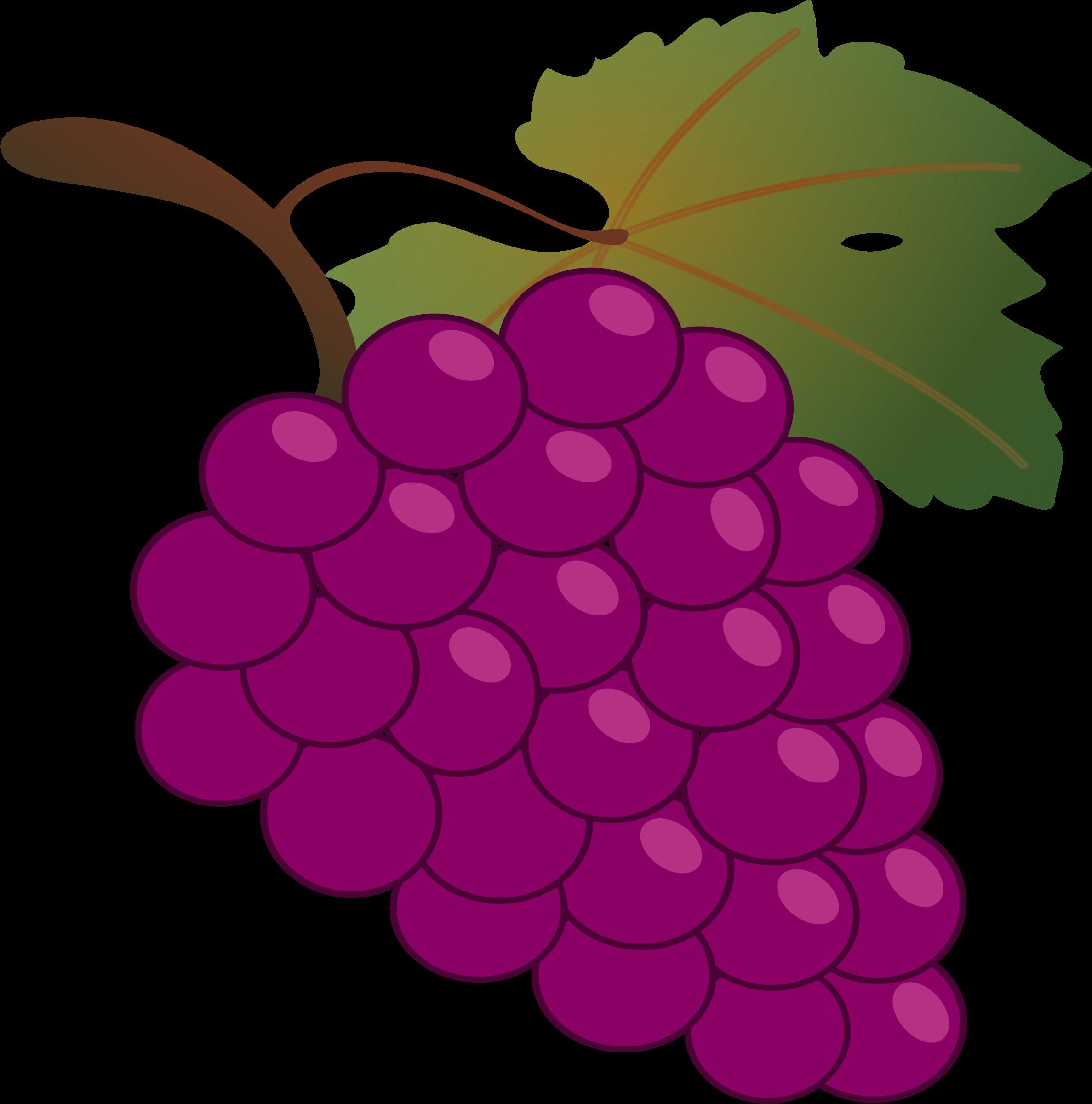 I clipart grape.