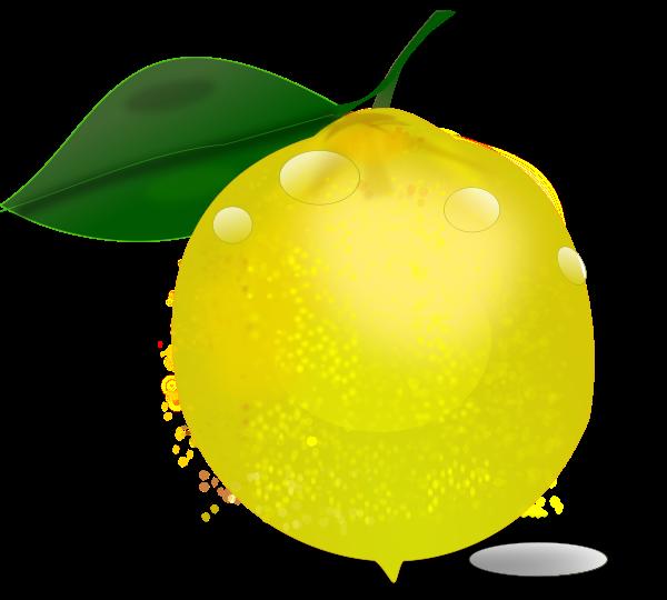 Lemon Slice Clipart | Clipart Panda - Free Clipart Images