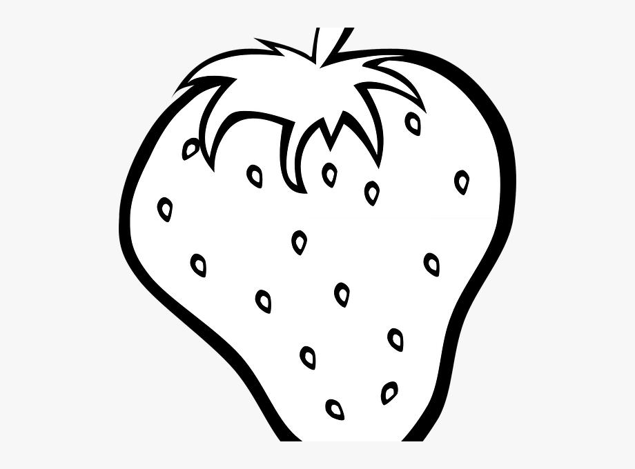 Fruit Clipart Line Fruit Line Transparent Free For Download On Webstockreview 2021