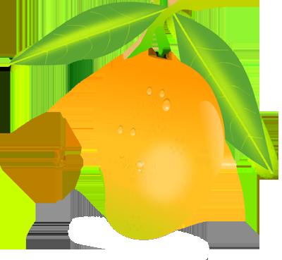 Mango clipart fruts. Free cliparts download clip