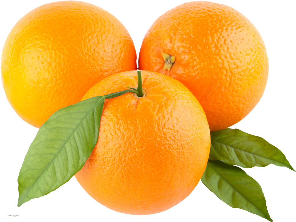 Png transparent images all. Fruit clipart orange