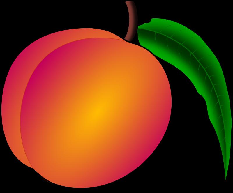 Fruits clipart peach. Medium image png