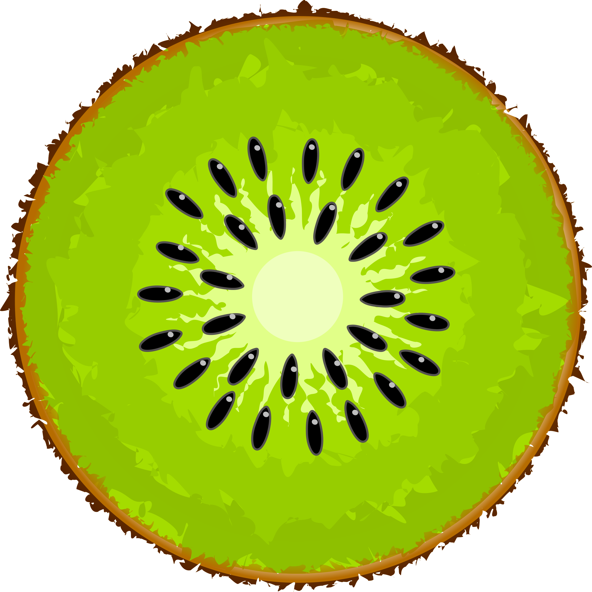 Free kiwi cliparts download. Fruit clipart person