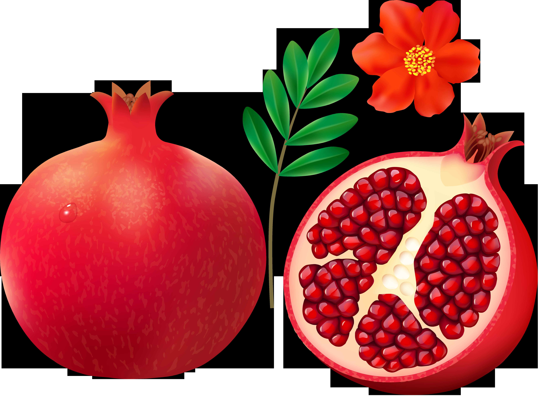 f cdba orig. Fruit clipart pomegranate
