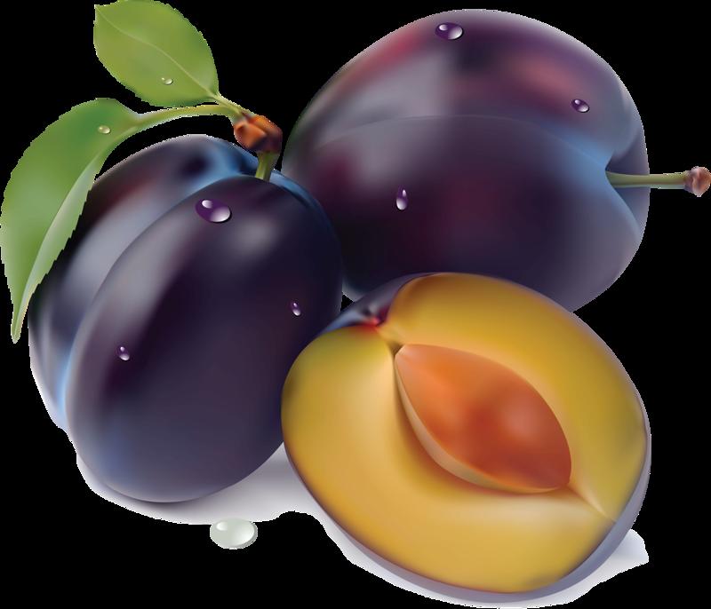 Grape clipart plum fruit.  f da b