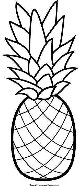 Pin by absirishareddy on. Pineapple clipart line art