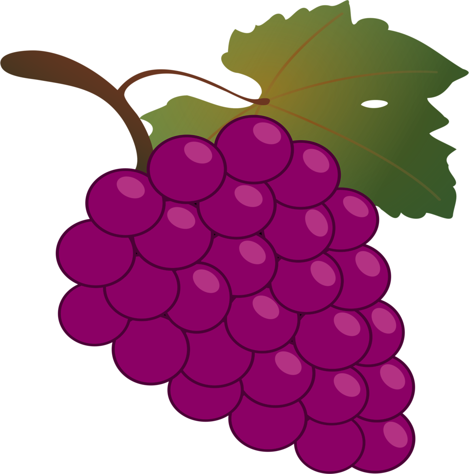 Grape clipart fruit vegetable.  collection of fruits