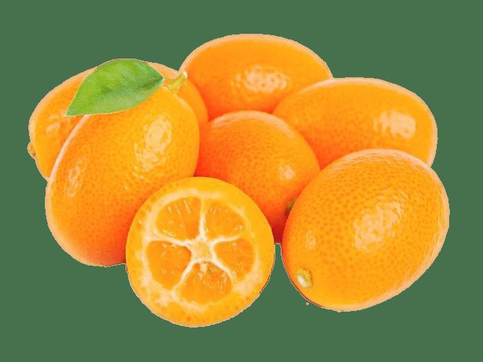 Fresh kumquat png stickpng. Fruit clipart transparent background