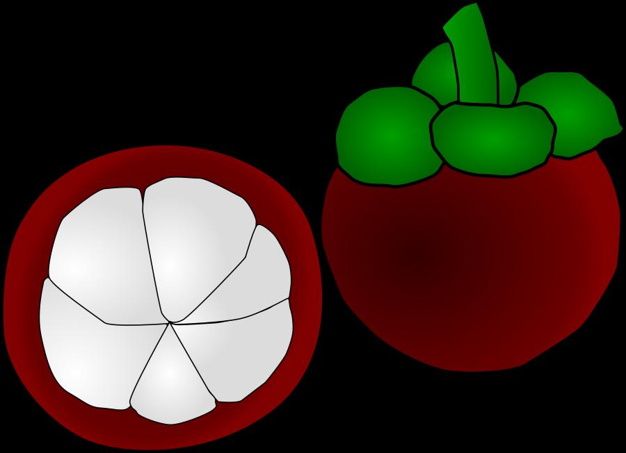 Fruit clipart tree. Clip art panda free