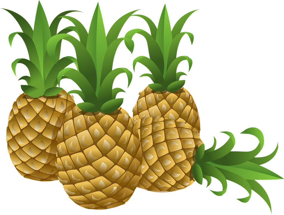 Fruit clipart tropical fruit. Pineapple pencil and in