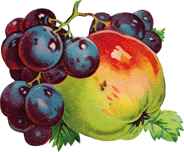Fruits clipart victorian. Glanzbilder die cut scrap