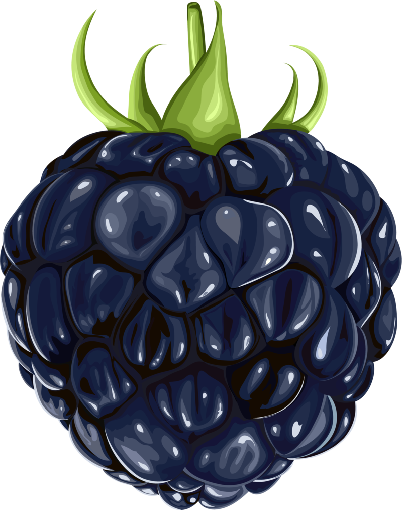 f c d. Fruits clipart printable