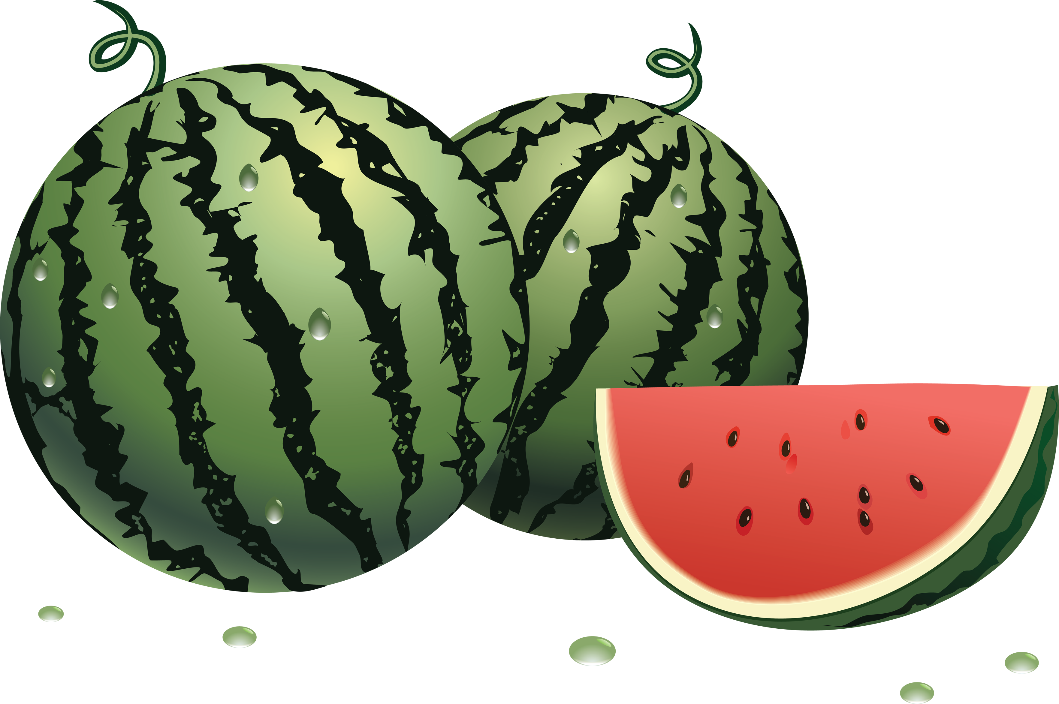 Fruit clipart watermelon. Png jokingart com
