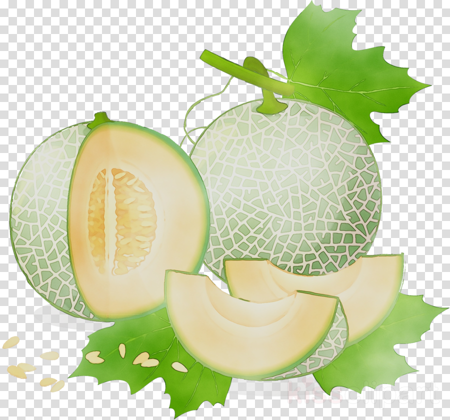 Cartoon food plant transparent. Winter clipart fruit