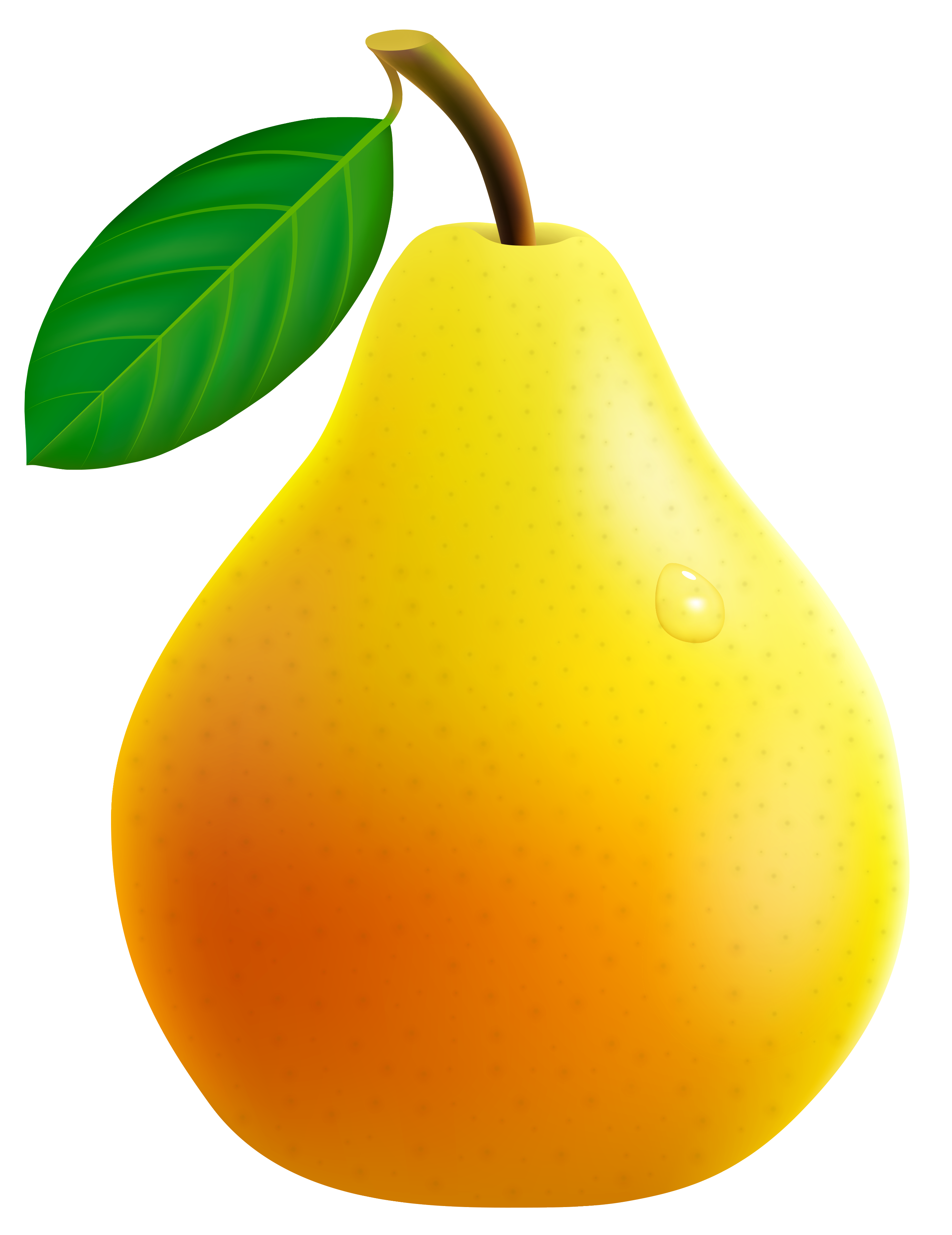 Pear clipart cyan. Yellow png vector image