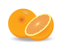 Free clip art pictures. Fruits clipart