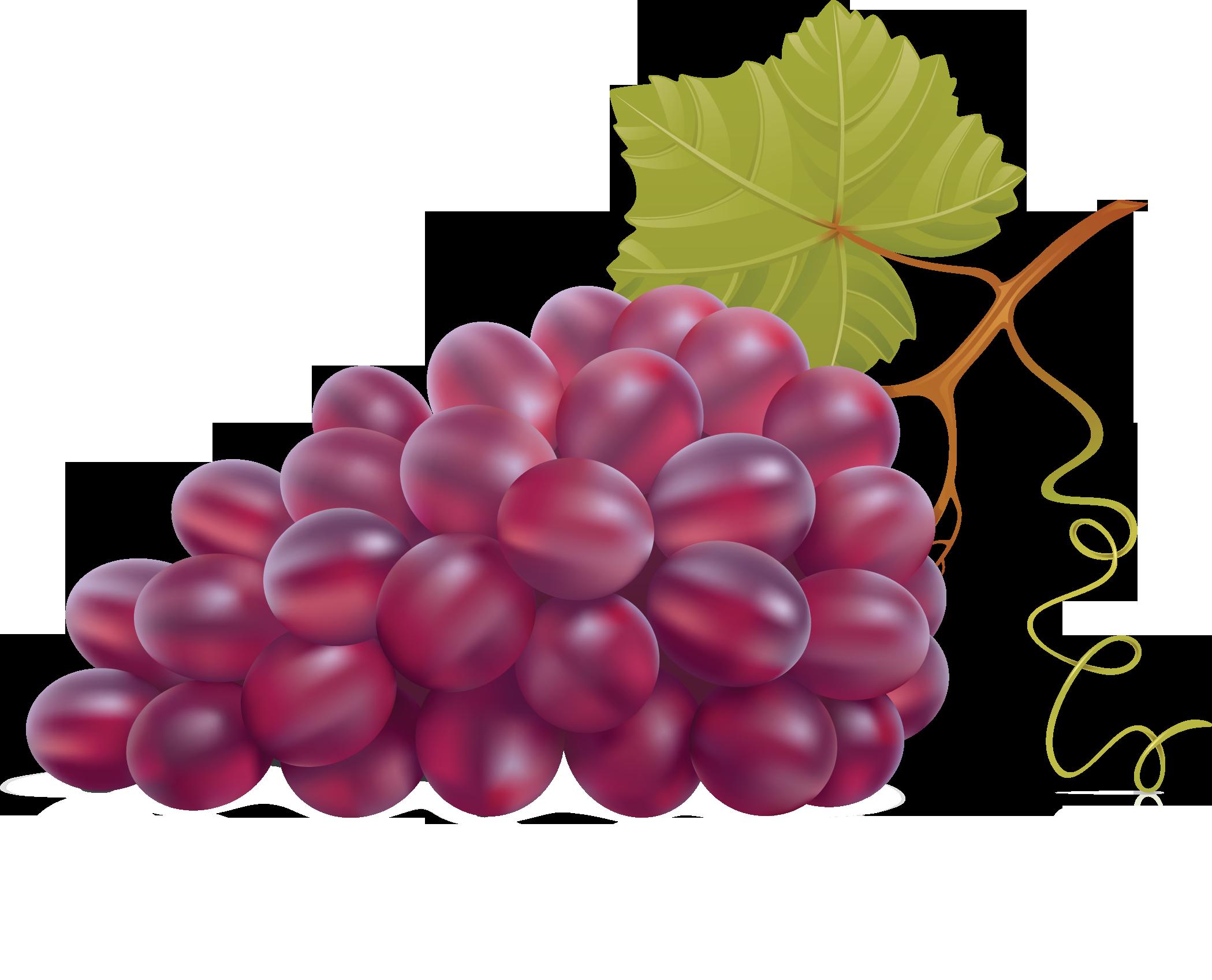 af d b. Grape clipart purple colour