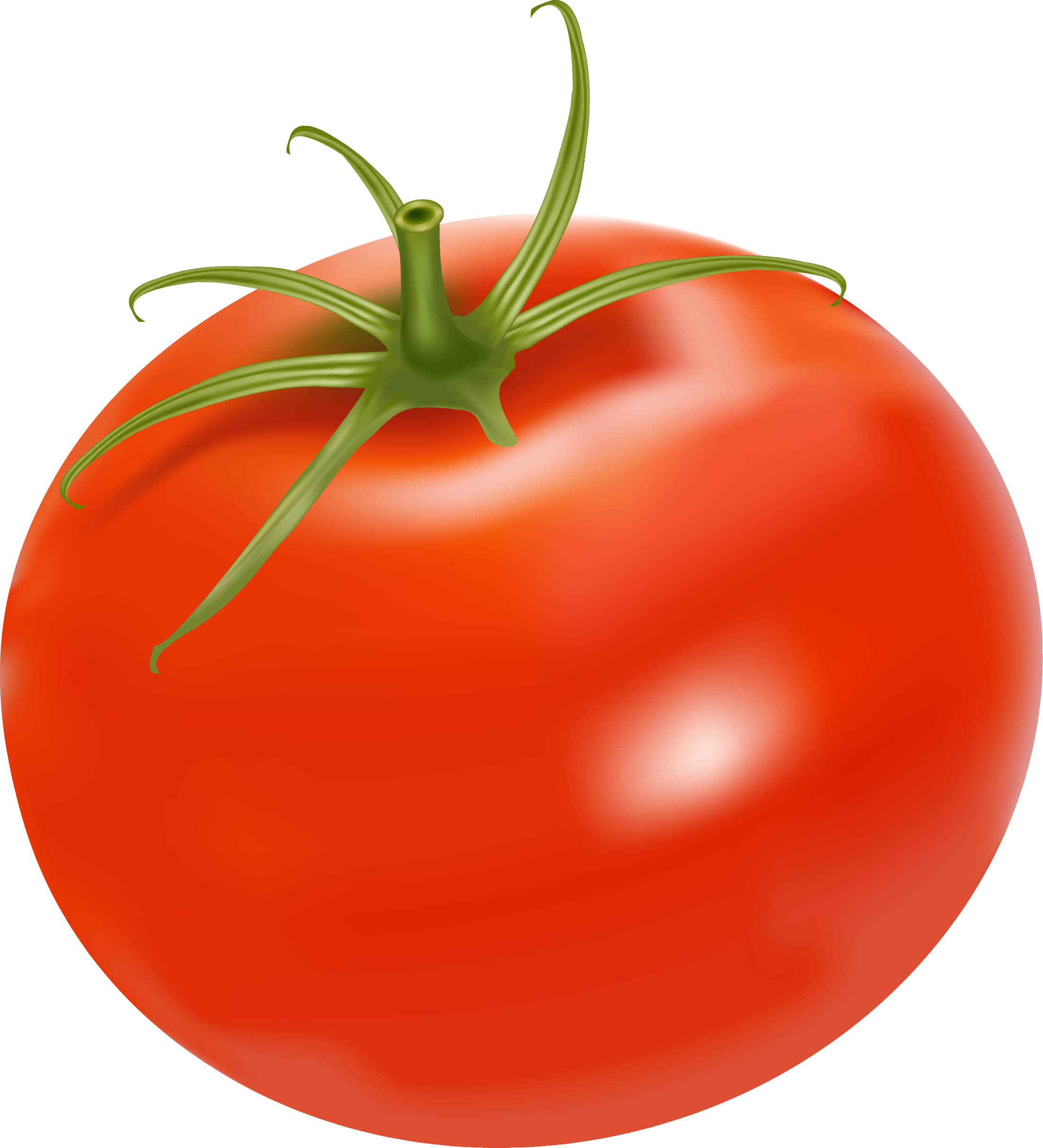Plum tomato chicken salad. Tomatoes clipart potato