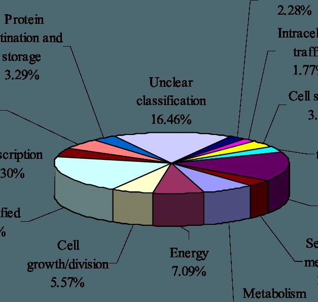 Fruits clipart diagram. Functional classification of unigenes