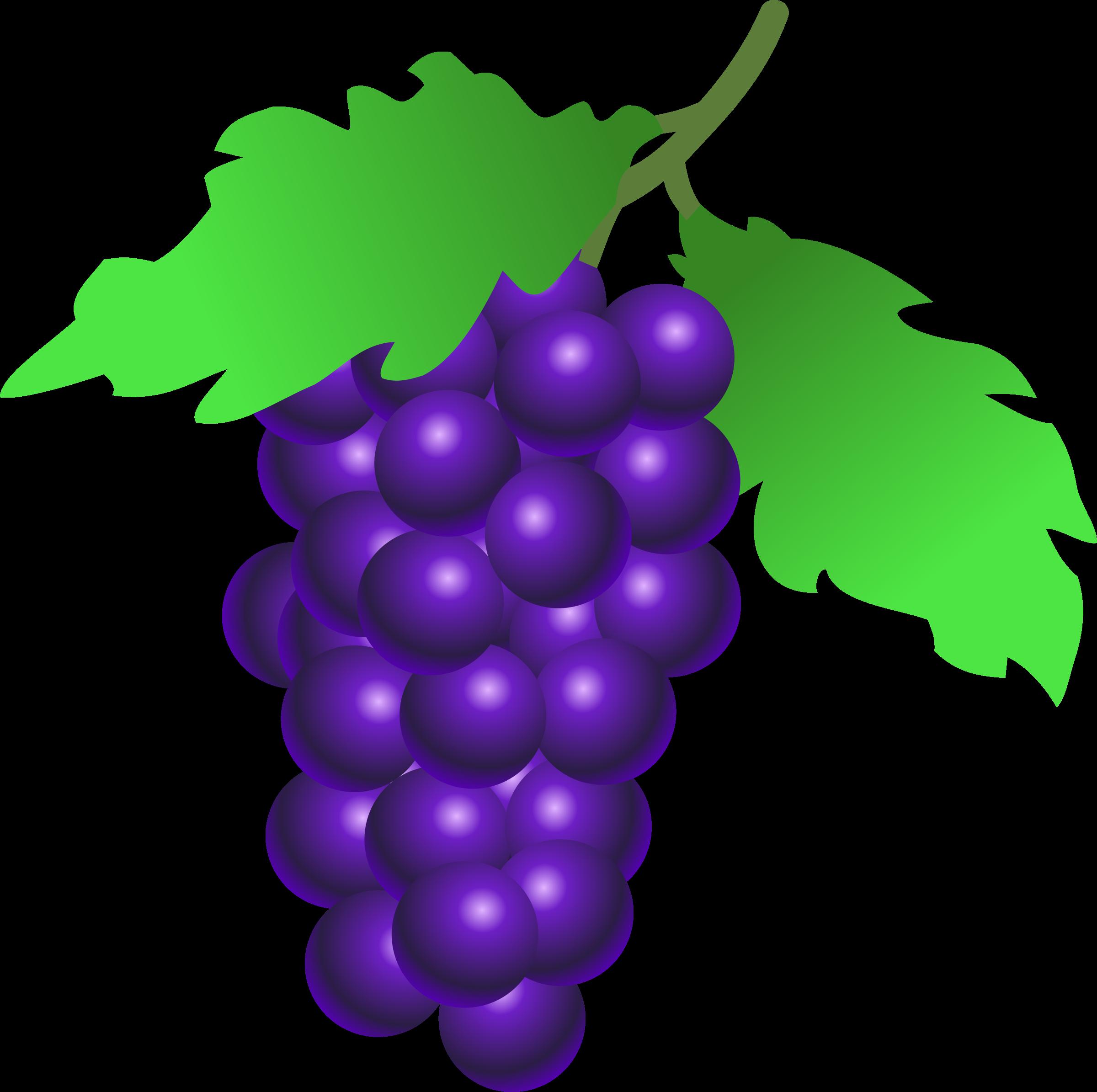 Grape clipart bunch grape. Grapes big image png