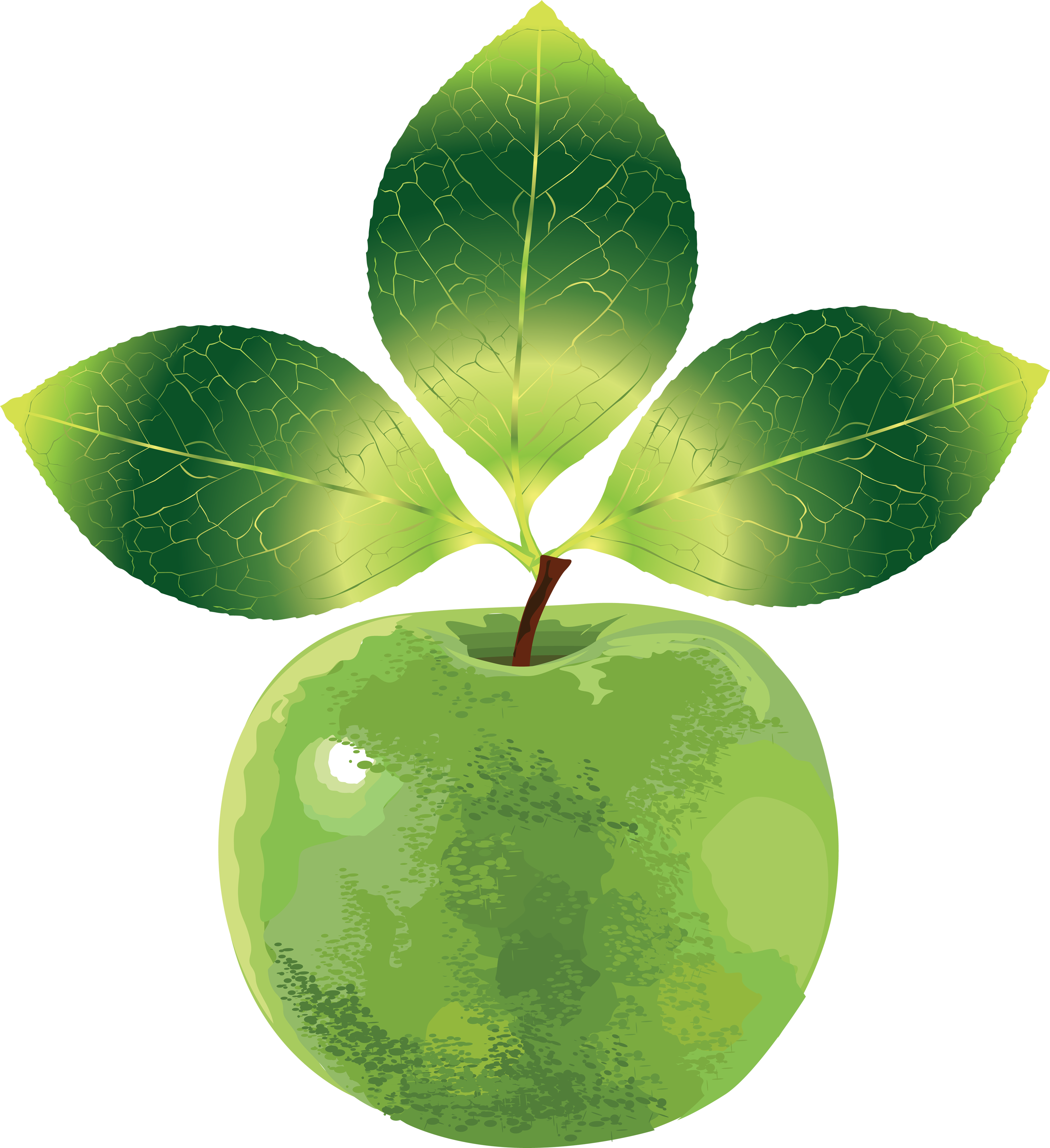 Apple png images free. Fruits clipart green fruit