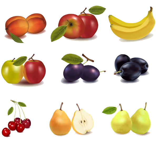 Pin by d ceylan. Fruits clipart local fruit
