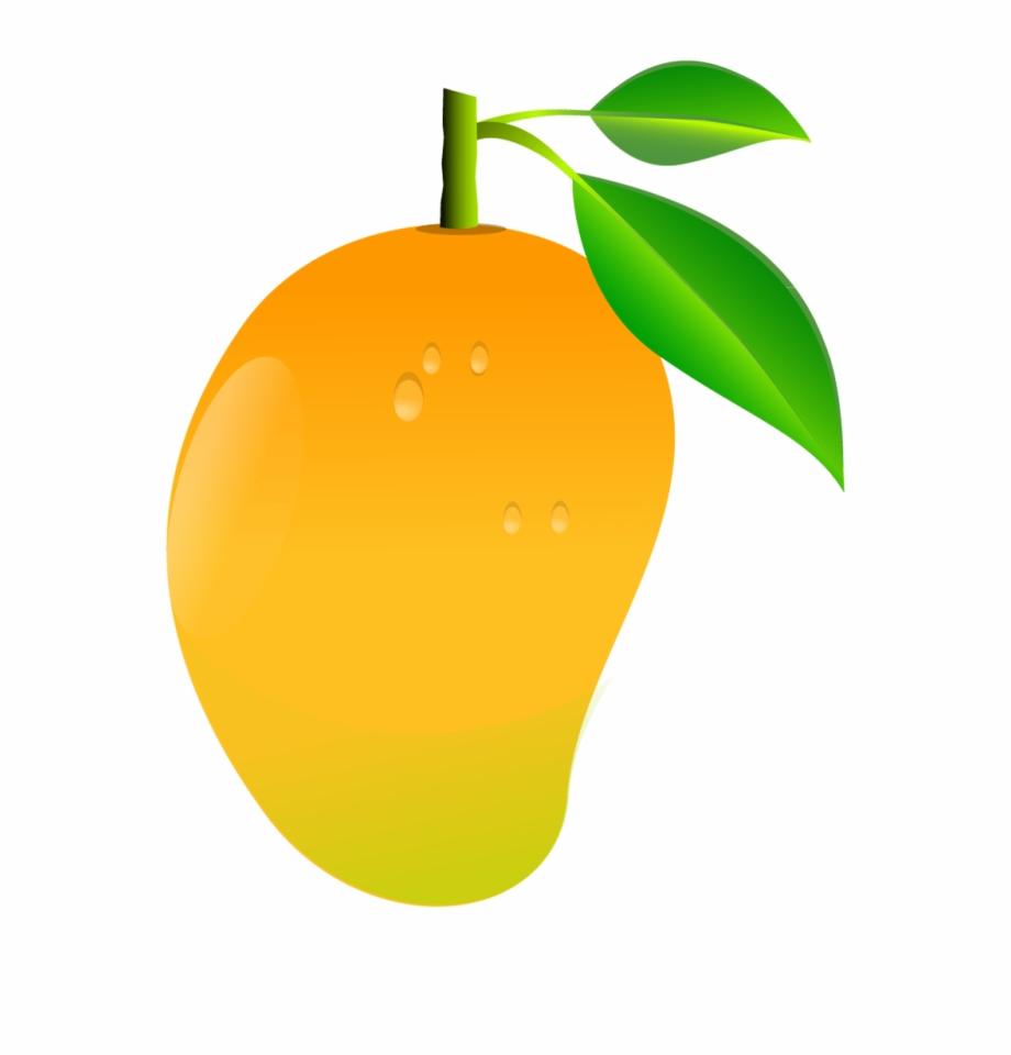Mango clipart transparent background. Fruit png