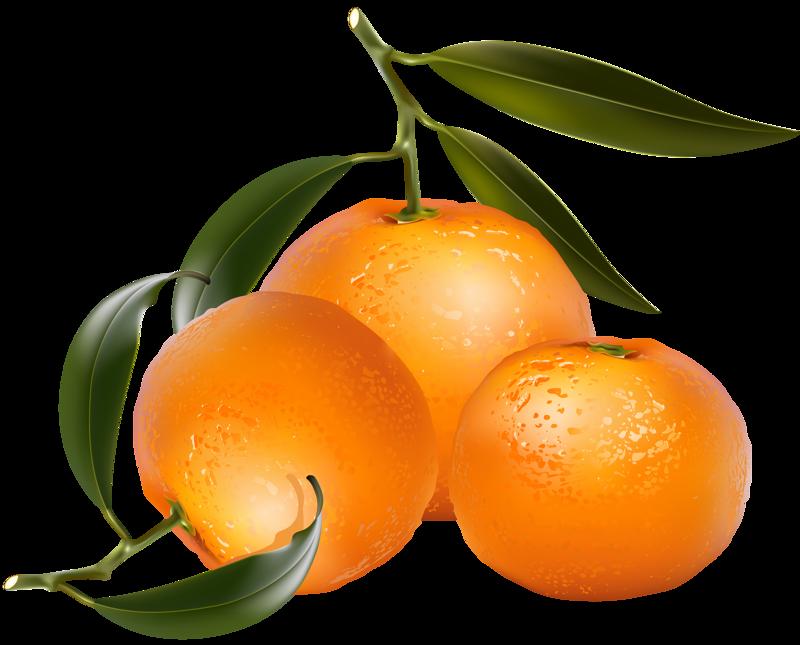 Jwc mjiqecdy png album. Fruits clipart mixed fruit