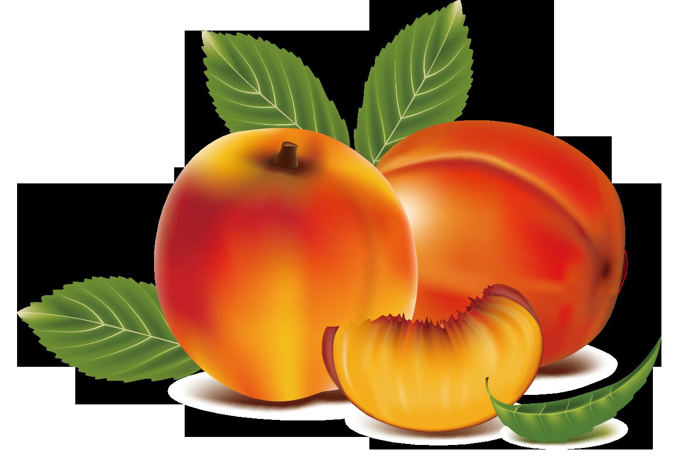 Fruits clipart peach. Fruit clip art transprent