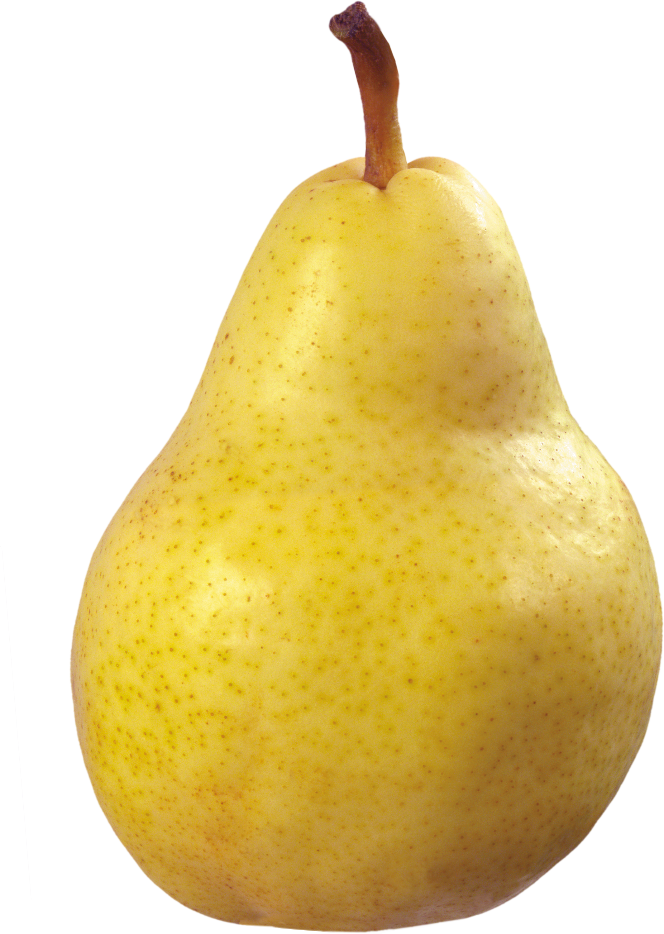 Thirty six isolated stock. Pear clipart yellow pear