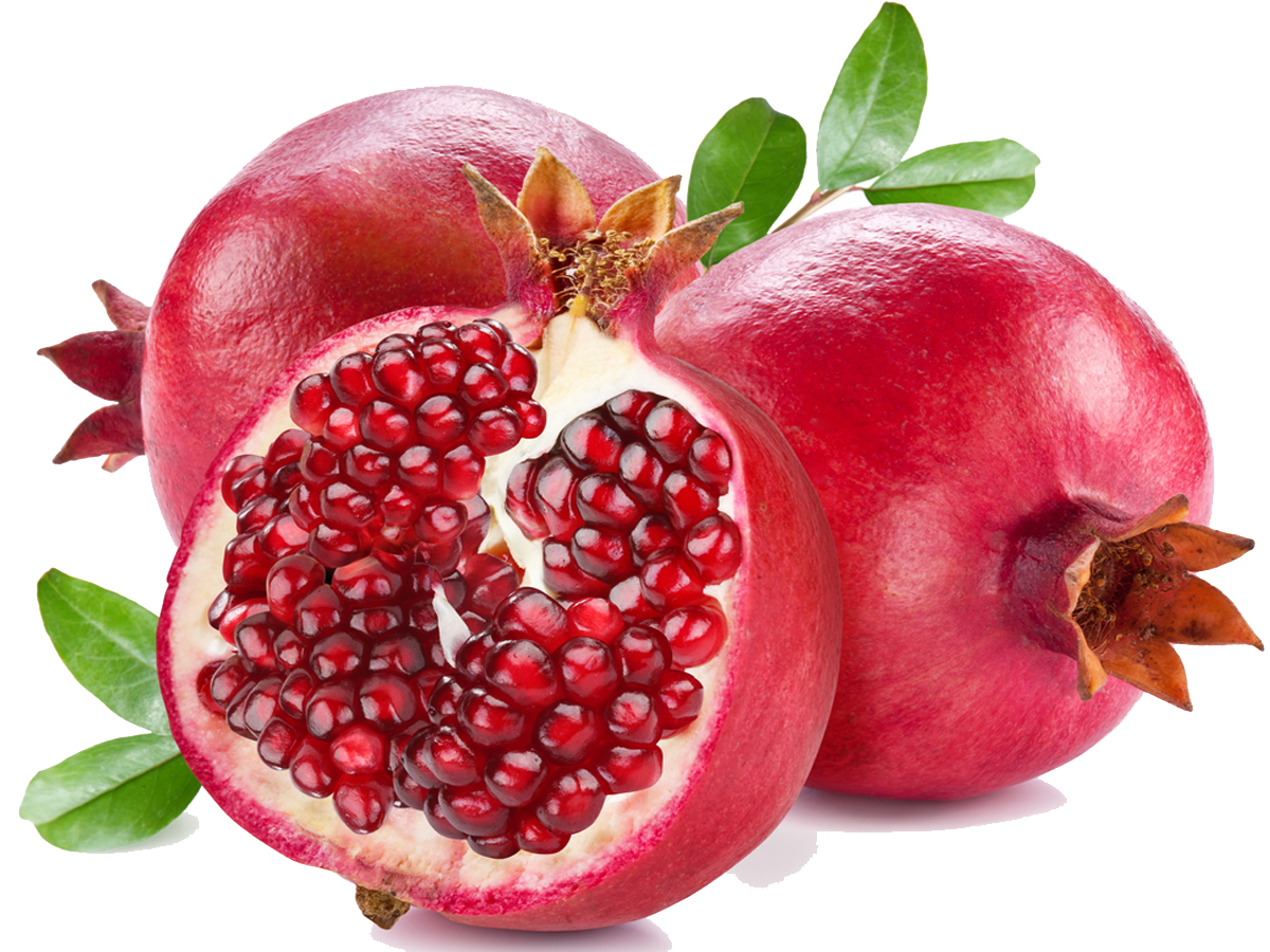 Fruits clipart pomegranate. El wadi international trade