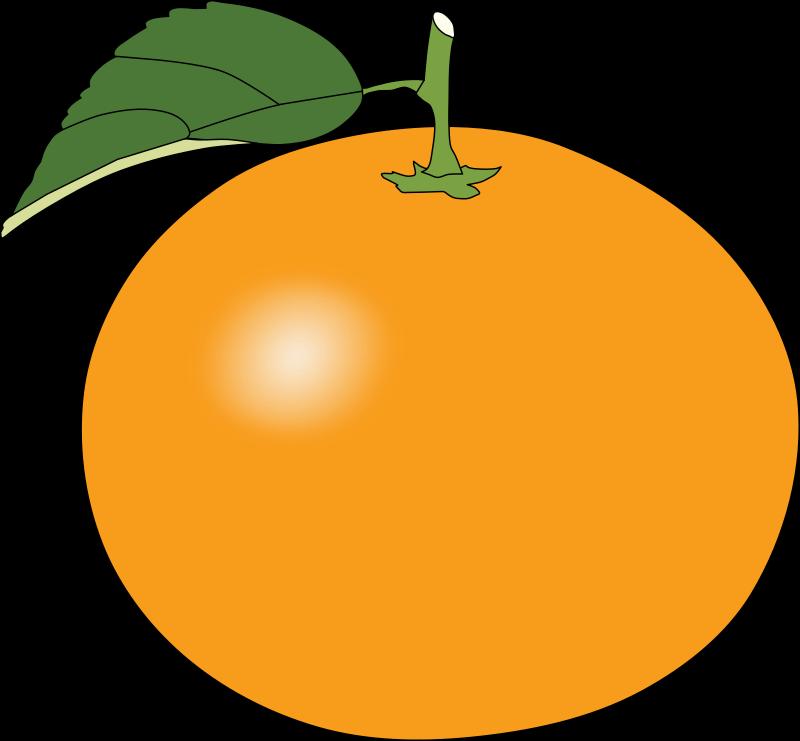 Free orange jokingart com. Fruits clipart printable
