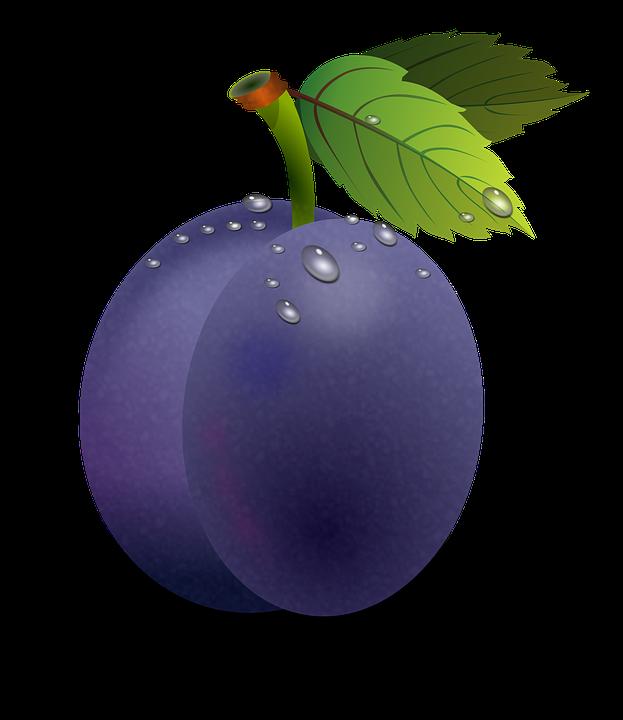Gratis billede p pixabay. Fruits clipart purple fruit