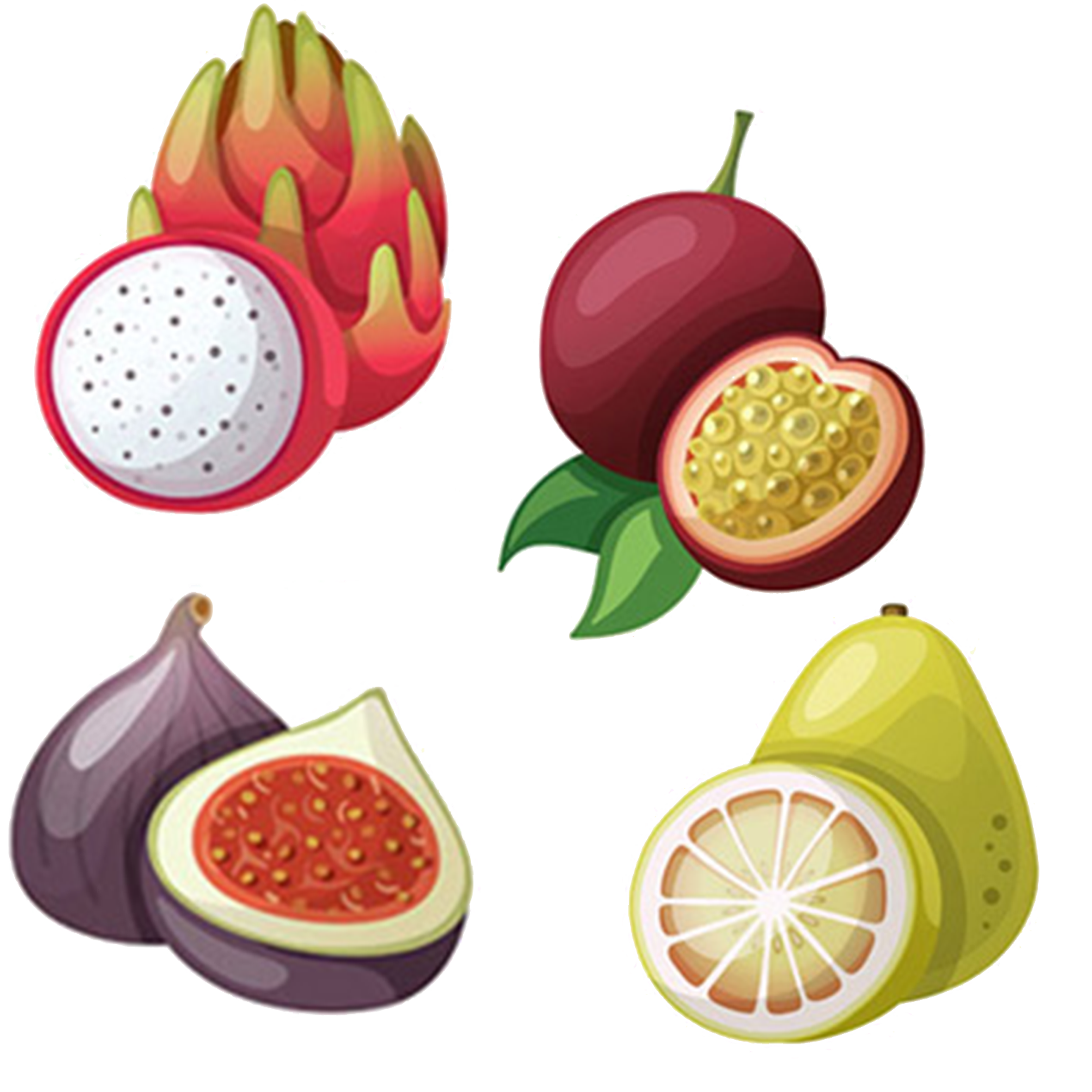 Fruits clipart tropical fruit. Illustration dragon mangosteen passion