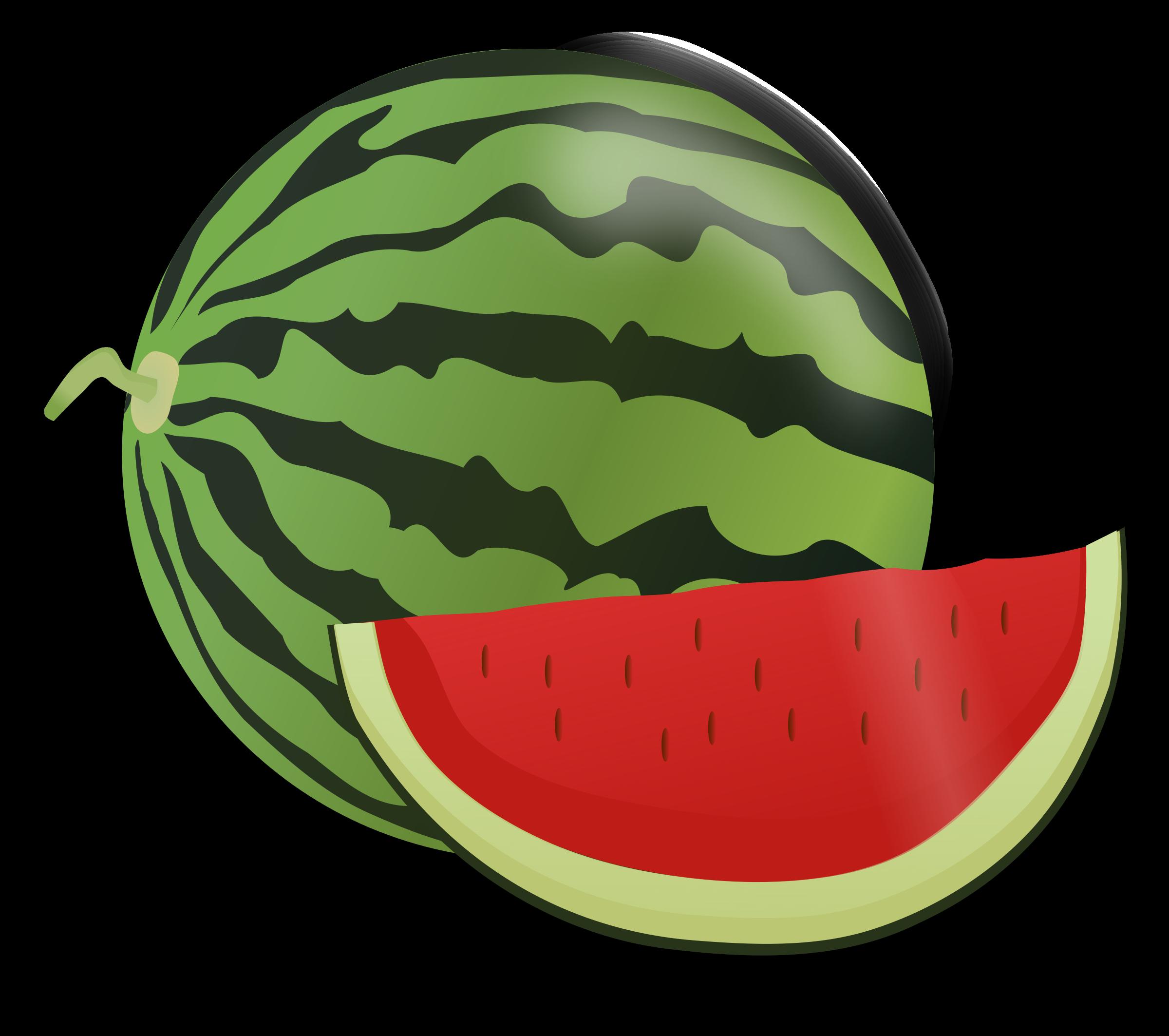 Plants clipart water melon. Big image png