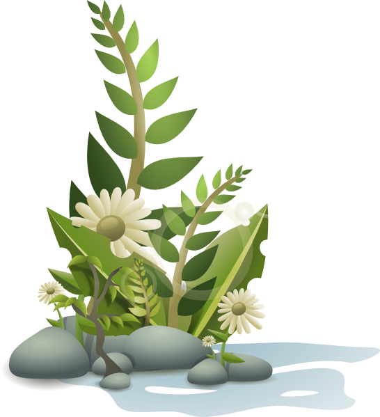 Andy plants pebbles and. Funeral clipart box
