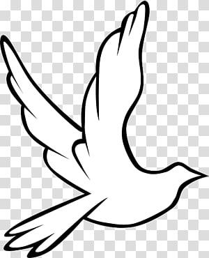 Funeral clipart holy spirit. Columbidae doves as symbols
