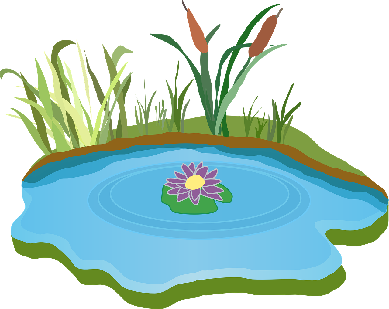 Pond water outdoor grass. Game clipart out door