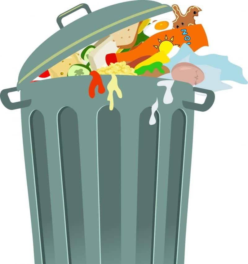 Not want cini little. Garbage clipart organic waste